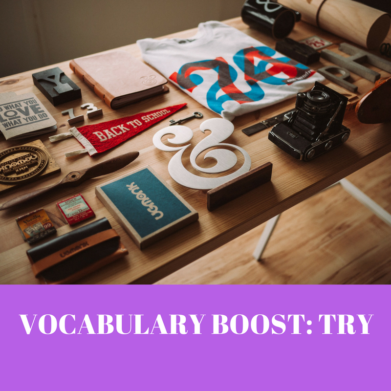 VOCABULARY BOOST- TRY
