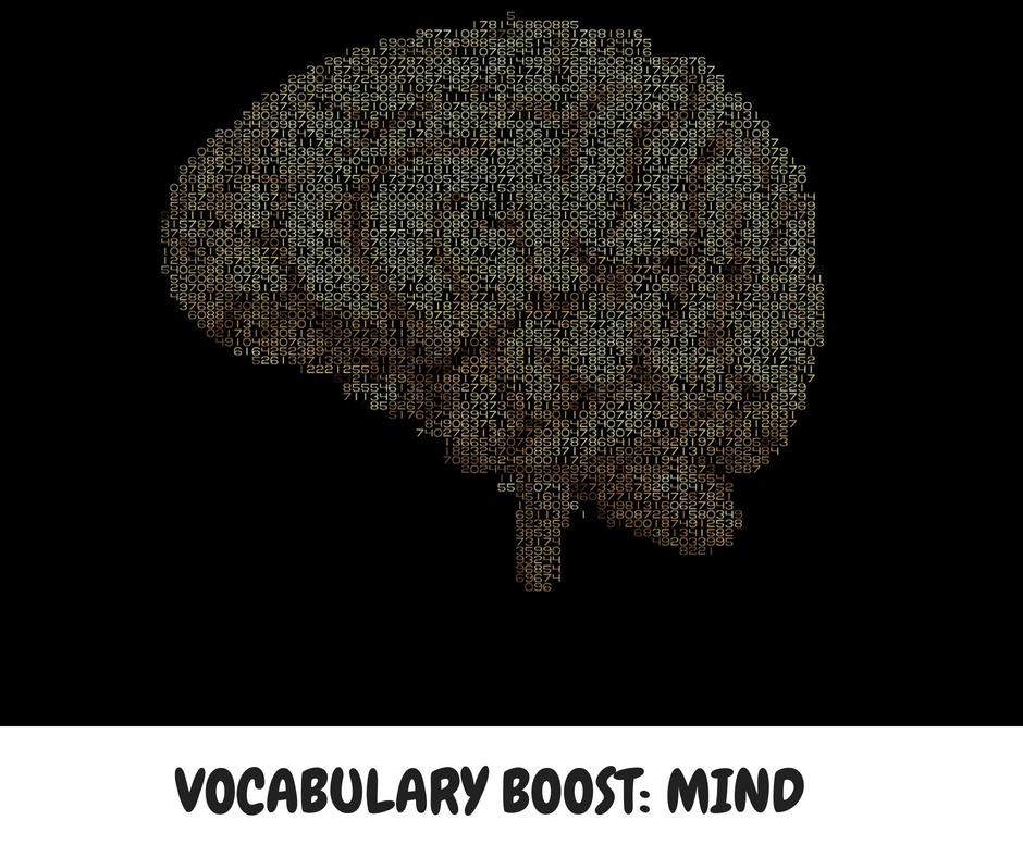 VOCABULARY BOOST- MIND
